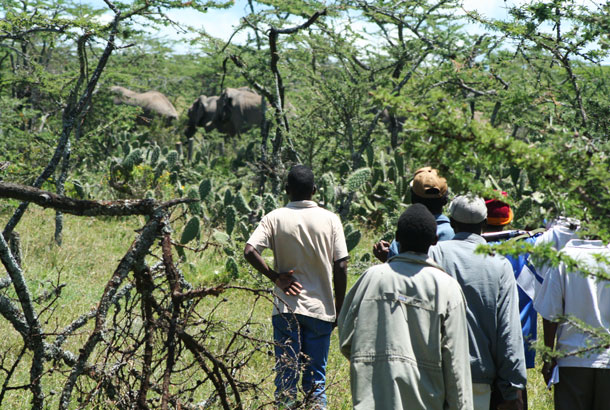 -farmers-scaring-away-elephants