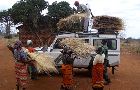 KING-loading-thatched-roofs