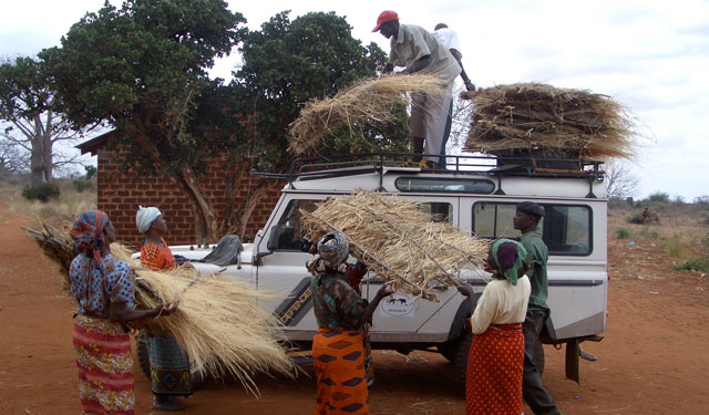Loading thatched roofs