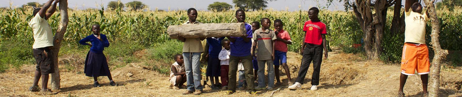 tanzania-fence