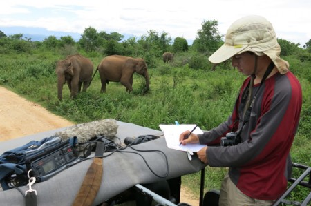 Mickey Pardo studying elephant vocalisations in Uda Walawe