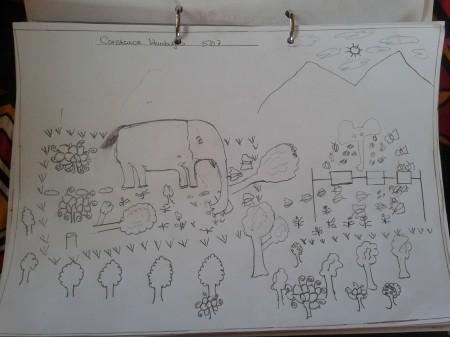 Drawing of crop-raiding