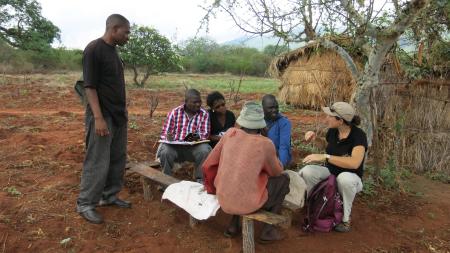 team with wabongo