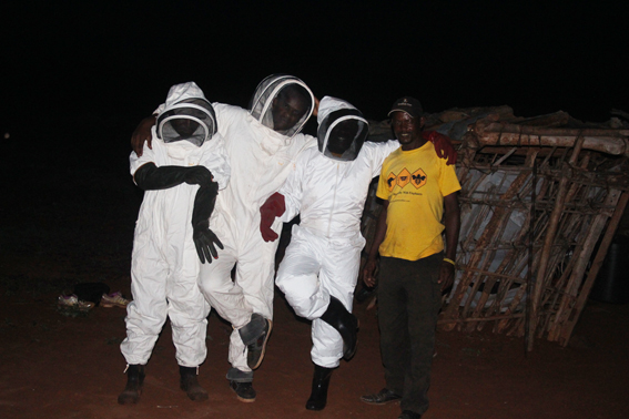 Beehive-suits
