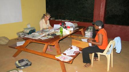 Team pressing plants in evening