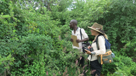 looking into bushes with john