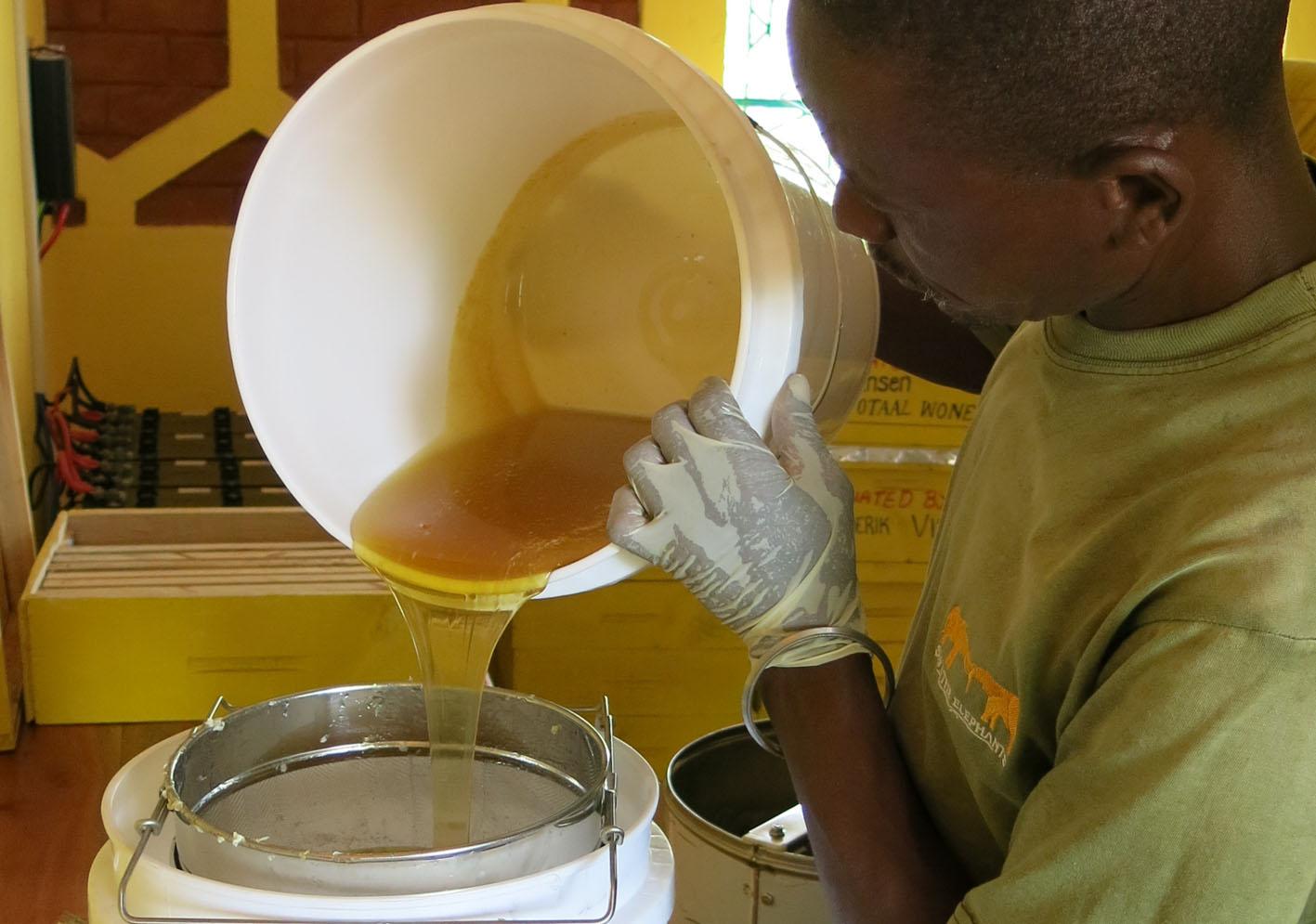 Nzumu-pouring-honey