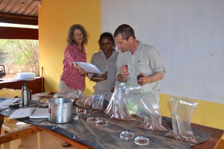 Gary analysing soil samples