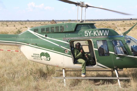 The Kenya Wildlife Service vet prepares for the darting procedure