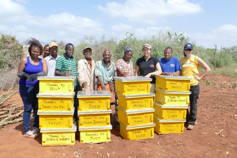 Team-with-daudis-beehives-1