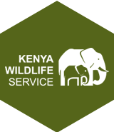 kenya-wildlife-services