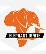 elephantignite