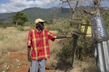 Beehive fence that deters the elephants and produces honey