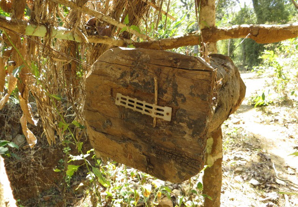 Log-hive-with-bee-gate1-1