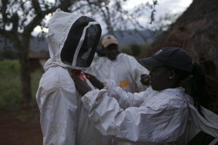 The team putting on bee suits for night work
