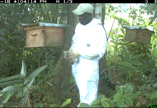SN-Steeve-checking-empty-hives