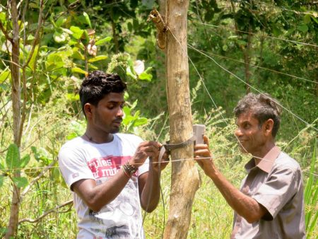 Field assistant Supun Herath and local farmer Mr. Dharmadasa set up camera traps