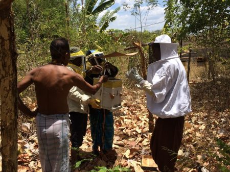 A farmer helps Kylie and two field assistants as they strap his hive back together