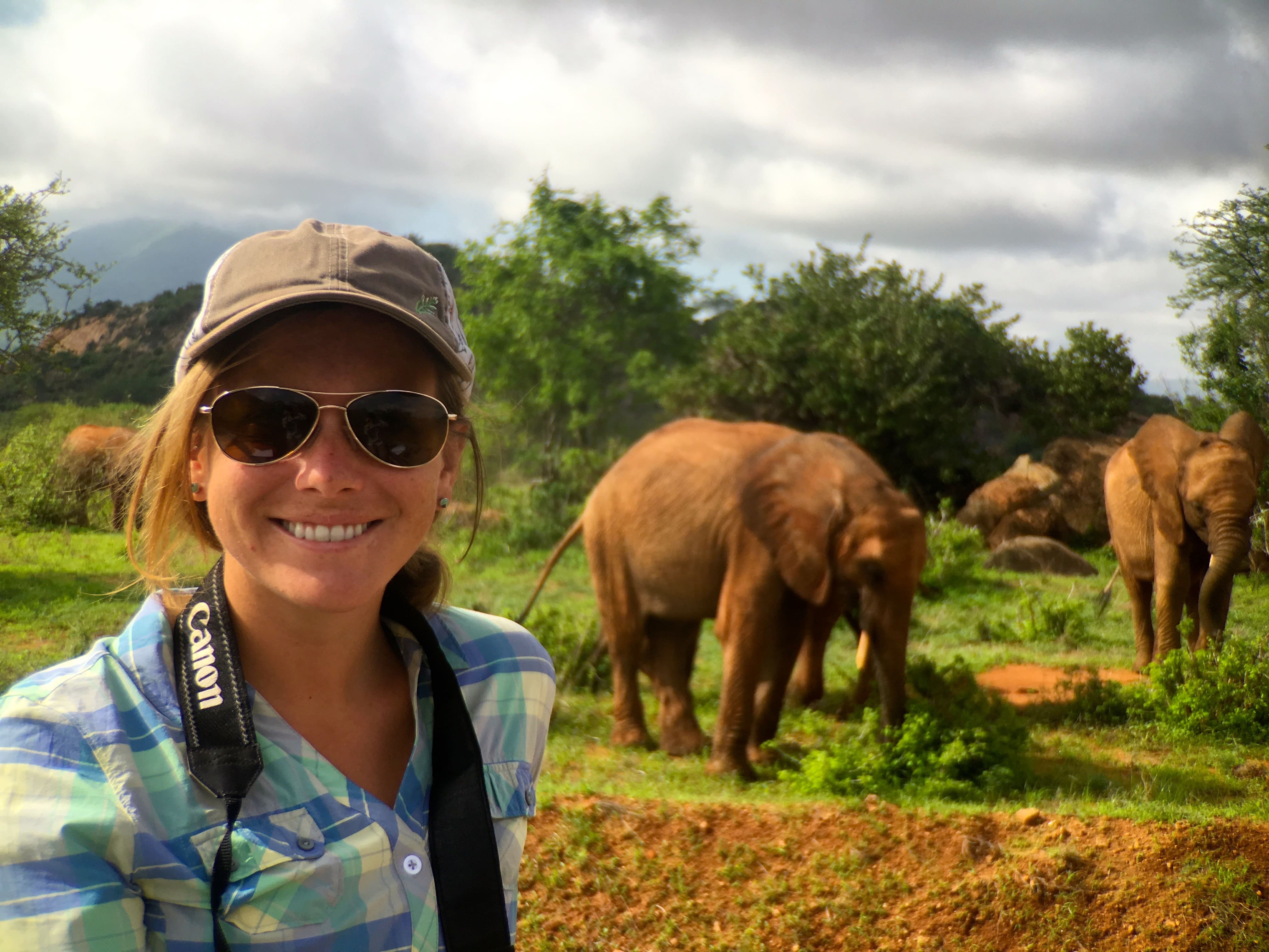 Trips into the park with George to observe elephants and their foraging behaviour.