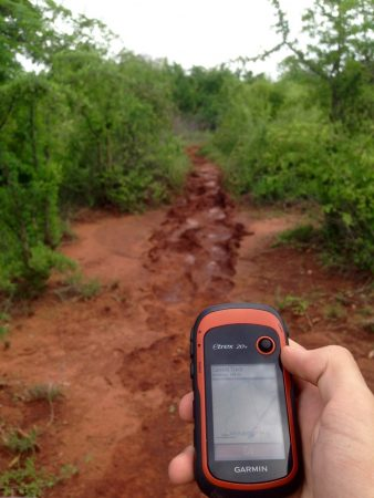 Some days tracking the elephants is easier than others