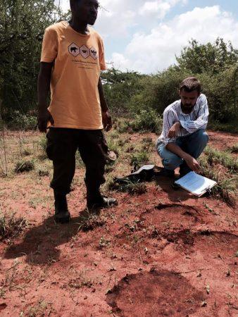 Tracking elephants with Emmanuel