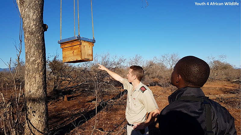 Elephants & Bees › Human-Elephant Conflict and the use of Honeybees: A  South African's Perspective in Sri Lanka